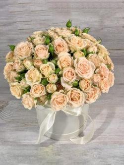 Шляпная коробка из 15 кремовых кустовых роз