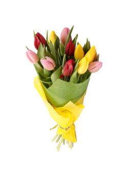 Букет из 11 разноцветных тюльпанов в упаковке из фетра