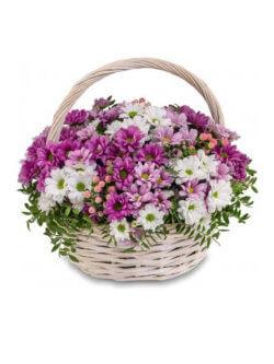 Корзинка с хризантемами кустовыми, гиперикумом