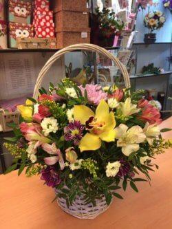 Корзинка с орхидеей, альстромерией, хризантемой и декоративнйо зеленью