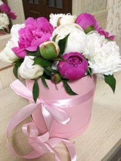 Шляпная коробка с пионовидной розой цвета микс