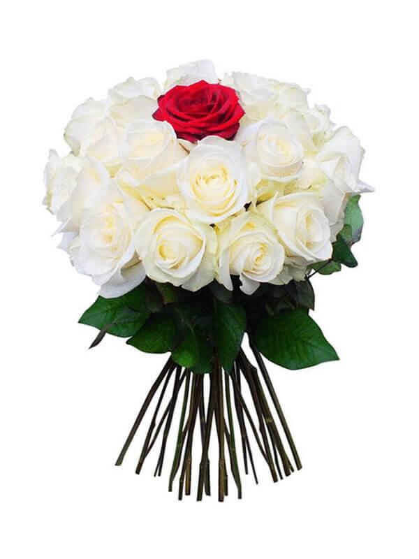 Букет из 18 белых роз и 1 красной