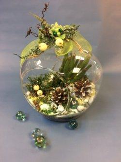 Флорариум зимний