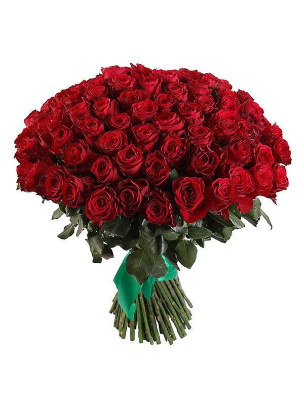 101 красная роза сорта Хартс