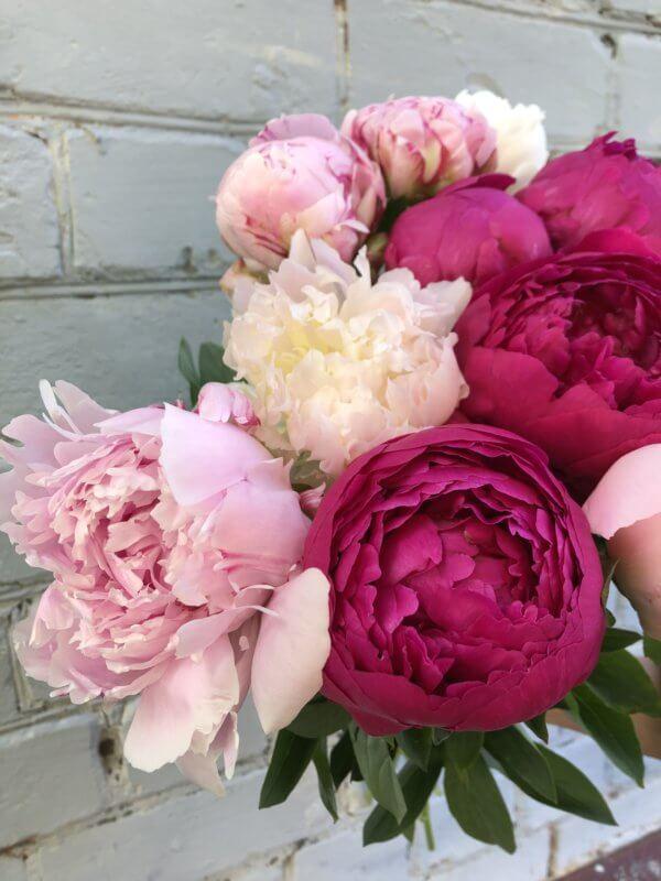 Букет пионов белых, розовых и малиновых